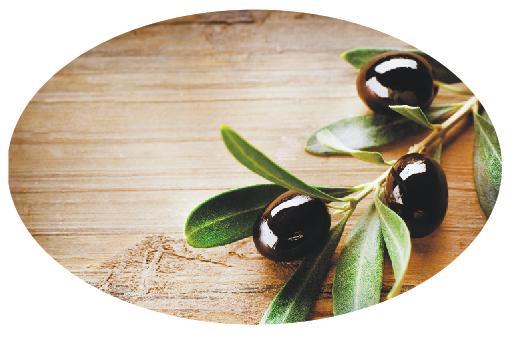 Овальный стол оливка