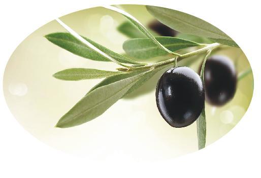 Овальный стол зеленая оливка