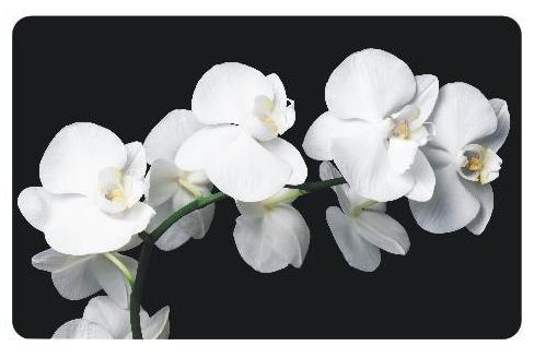 Обеденный стол белые орхидеи